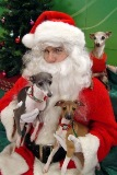 Hooper, Isis, and Juliette with Santa